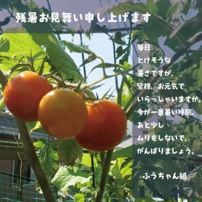 Photo_20200816215501